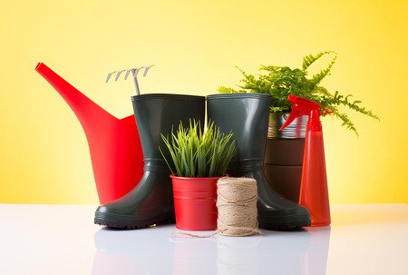 Spring gardening set with red accessories