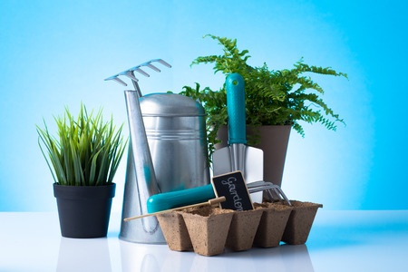 Garden equipment  boots, shovel, rake, gloves, pot  over blue background photo