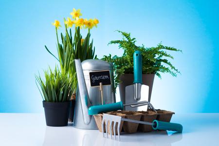 Garden equipment  boots, shovel, rake, gloves, pot  over blue background Stock Photo