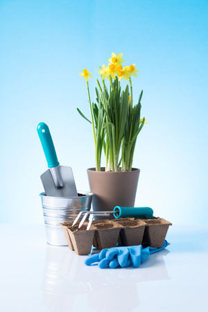 Garden equipment   shovel, rake, gloves, pot  over blue background