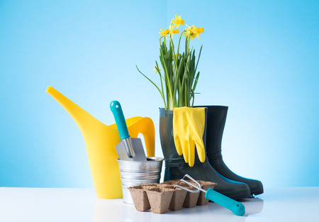 Garden equipment  boots, shovel, rake, gloves, pot  over blue background Stock Photo