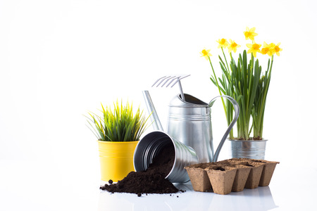Subtle tin gardening items and flowers composition isolated on white