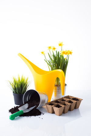 Garden equipment with green plant against a white background  Stock Photo