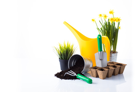 Garden equipment with green plant against a white background  photo