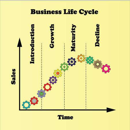 life cycle: Business life cycle
