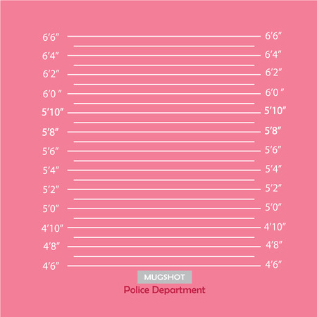 mugshot: Police lineup or mugshot background,mugshot vector.vector illustration