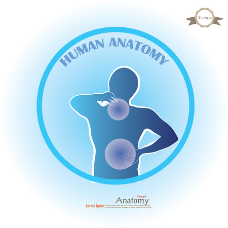 anatomy with pain point.man having pain at neck and back.vector illustration.
