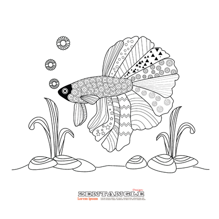 fighting fish: Fighting fish drawing for coloring book.betta fish zentangle style.vector illustration.