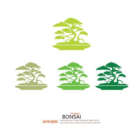 asian gardening: Bonsai.bonsai with pot on gray background.vector illustration. Illustration