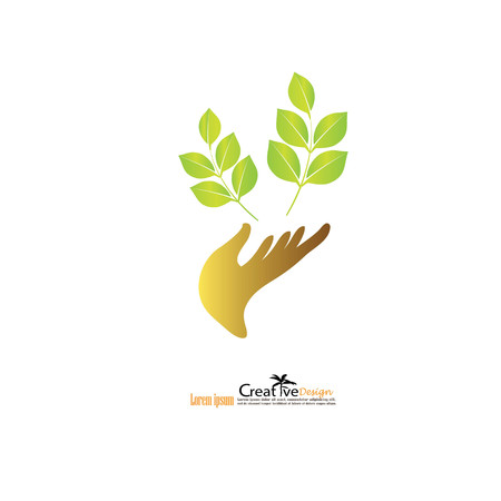 plant growth: Hand holding plant. Growth concept.vector illustration.