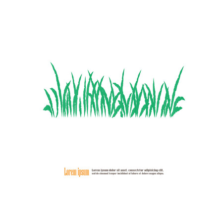 Grass.Vector Illustration.