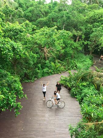 samutprakarn: SAMUTPRAKARN, THAILAND – JUNE 4 2017 ; woman riding bicycle. JUNE 4 2017 SAMUTPRAKARN, THAILAND.