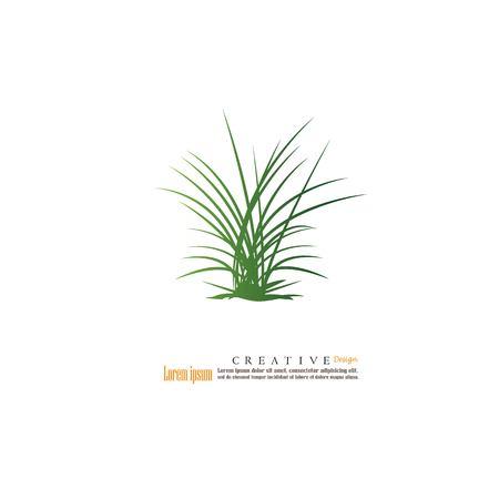 Grass.Vector Illustration. Stock Vector - 85186507