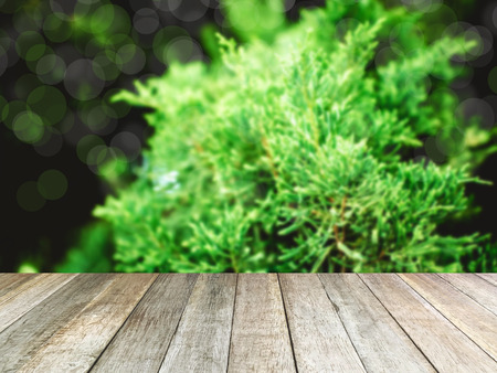 image of Wood table with blur pine tree. for background usage.
