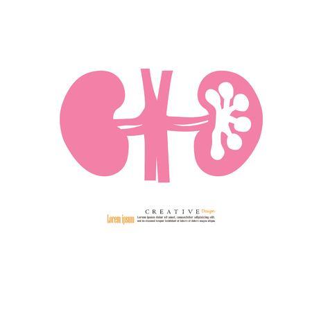 Kidney icon vector illustration. Illustration