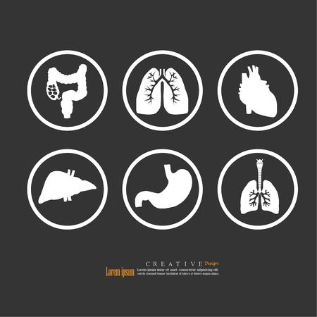 set of human organs vector illustration.