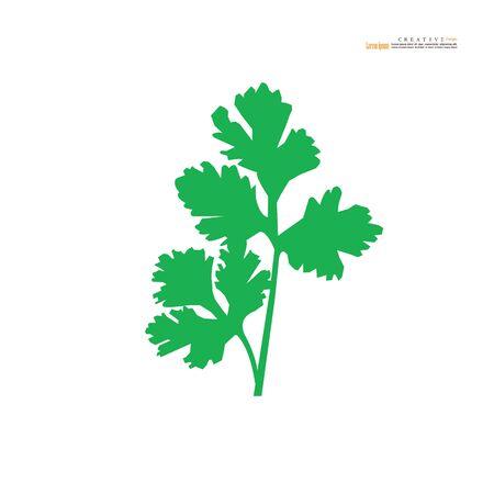 coriander or cilantro icon on white background. vector illustration.