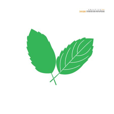 Basil leaves icon on white background. Food cooking ingredient aromatic organic. Vector illustration.
