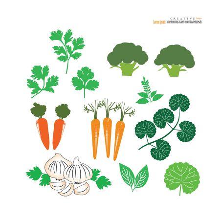 vegetables icon on white background.vector illustration.