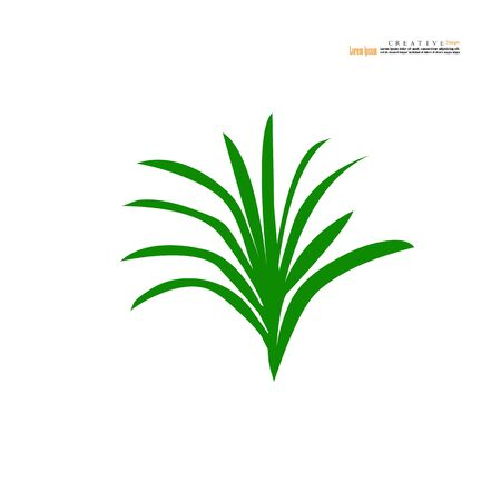 pandan leaves icon on white background.vector illustration.