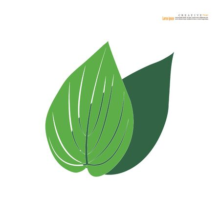 Green betel leaf icon on  white background.vector illustration. 向量圖像