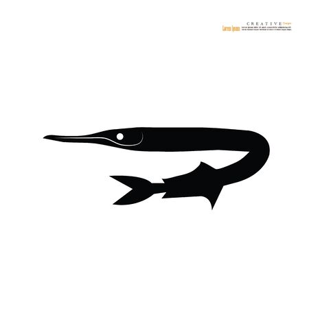 Needlefish fish isolated on white background.vector illuatraion. Illustration
