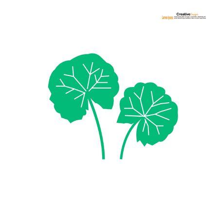 Centella asiatica icon on white background.Herbs help to heal inflammation.Gotu kola icon.vector illustration. 矢量图像