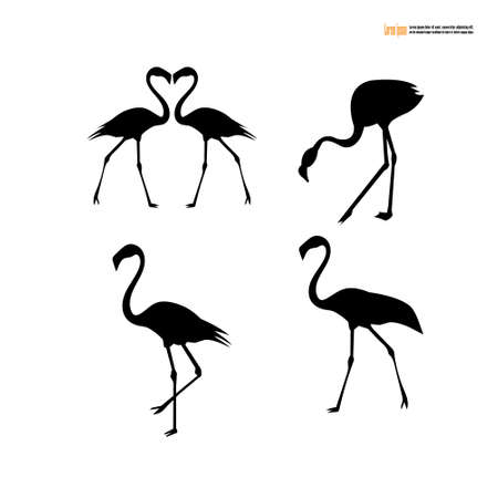 Flamingo Birds silhouette icon on white background. Vector Illustration. 矢量图像