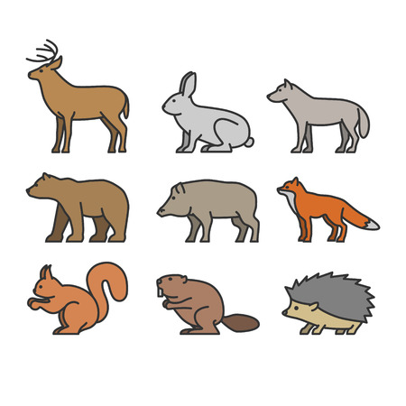 animales del bosque: Painted outline figures of forest animals. Vector figures icon set. Vector deer, rabbit, wolf, bear, boar, fox, squirrel, beaver, hedgehog