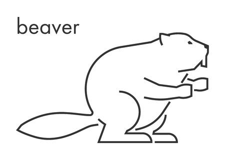 castor: Vector línea de figura de castor en un fondo blanco. castor lineal para la web y el diseño. Vectores