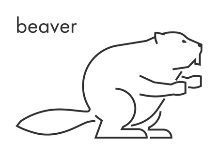 Vector line figure of beaver on a white background. Linear beaver for web and design.