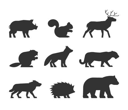 shape: set of figures of wild animals. Silhouettes wild animals isolated on white. Black wild animals. Shape boar, squirrels, deer, beaver, fox, wolf, hedgehog and bear. Illustration