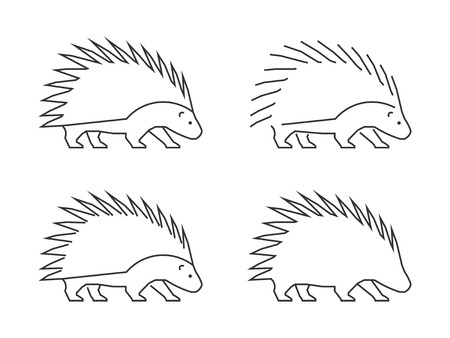 porcupine: Outline porcupine on a white background.