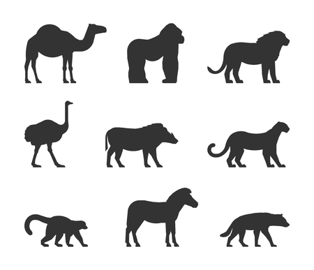dromedary: Vector black set of silhouettes african animals. Figure dromedary, gorilla and lion. Icon ostrich, warthog and leopard. Silhouette zebra, lemur and hyena. Figure african animals isolated.