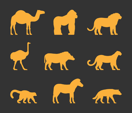 dromedary: Vector gold set of silhouettes african animals. Icon dromedary, gorilla and lion. Figure ostrich, warthog and leopard. Symbol zebra, lemur and hyena. Silhouette african animals isolated. Illustration