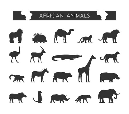 meerkat: Vector set silhouettes of African animals. Vector silhouette of lion, leopard, monkey and crocodile. Geometric black animals of Africa. The black silhouette of a lemur, giraffe, hyena and elephant.