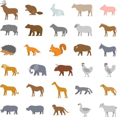 domestic animals: Vector set flat domestic animals. Illustration