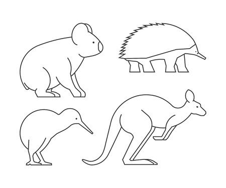 australian animals: Vector line set of australian animals. Linear icon koalas, kangaroos, echidnas and kiwi.