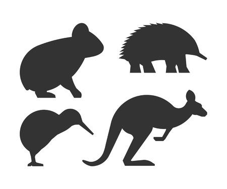 australian animals: Vector set of silhouettes australian animals. Black icon koalas, kangaroos, echidnas and kiwi.