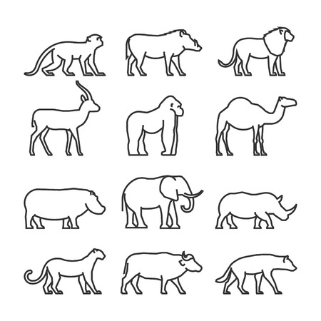 silhouette sign: Vector set outline African animals. Vector line silhouette of monkey, warthog, lion and antelope. Geometric linear animals of Africa. The outline silhouette gorilla, camel, hippo and elephant.