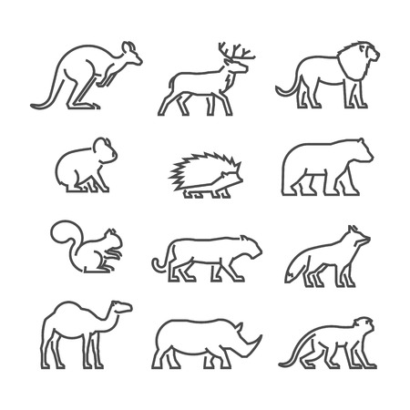Cool line icons wild animals. Vector black symbols wild animals on a white background.