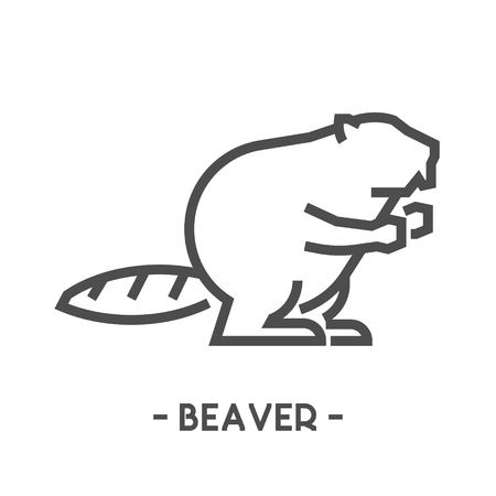 Vector outline figure of beaver on white background for web.