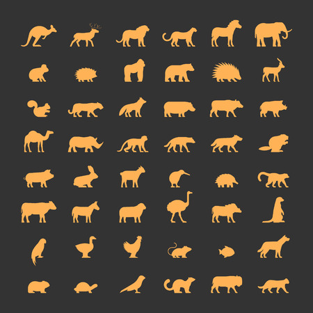 dromedary: Gold silhouettes of australian, african, american and other animals. Vector icon bear, gorilla, springbok, squirrel, panther, fox, hippo, dromedary and others. Open path.