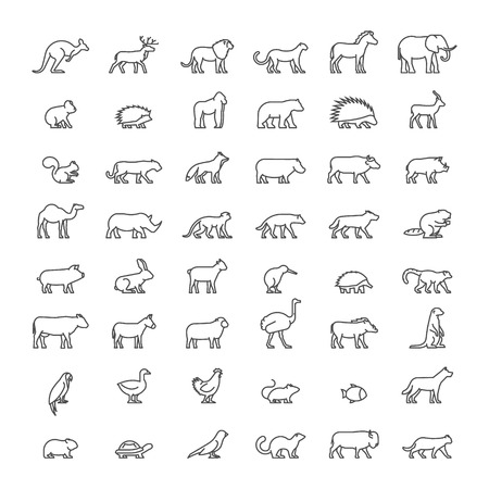 Line set of silhouettes of australian, african, american and other animals. Vector icon monkey, beaver, pig, kiwi, lemur, cow, chicken and others. Open path.
