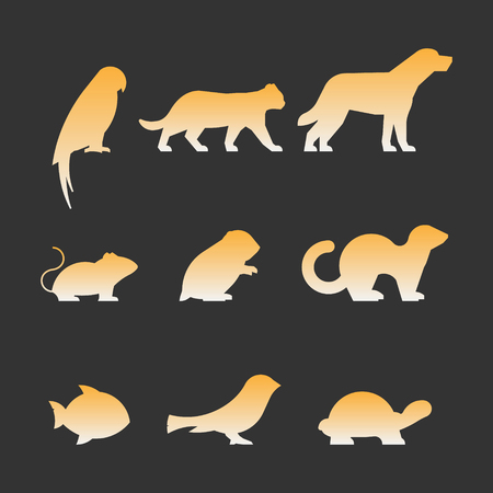 canary: Gold set of figures of pets. Black silhouettes pets isolated on white. Silhouettes parrot, cat, dog, mouse, hamster, ferret, fish, canary and turtle.