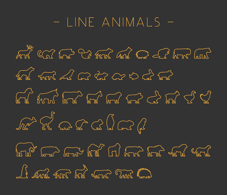 australian animals: Vector gold set of line silhouettes pets, forest and farm animals. Icon african and australian animals.