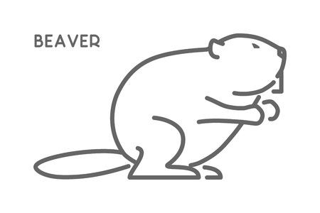Vector line figure of beaver. Outline forest animal for web and design. Illustration