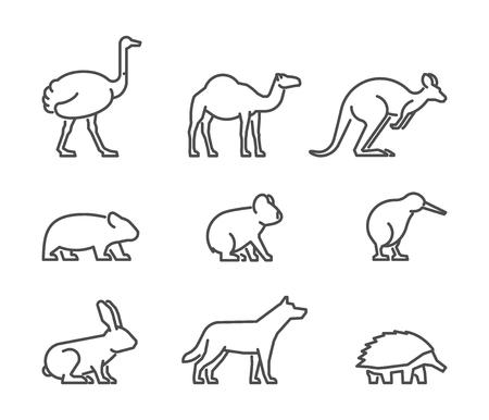 Vector set of linear Australian animals. Line icon koala, kangaroo, echidna, kiwi and other. Illustration