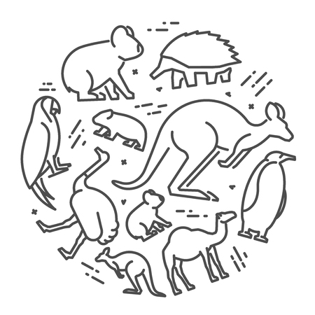 Vector line concept of australian animals. Linear icon koala, kangaroo, echidna and emu.
