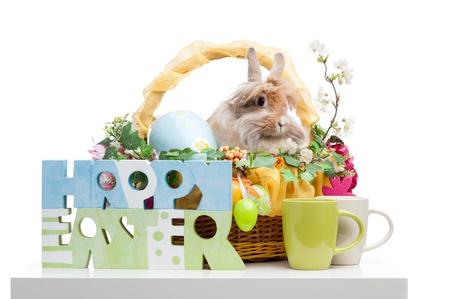 Pascua composición. signo feliz Pascua y el conejo en la cesta de Pascua aisladas sobre fondo blanco Foto de archivo - 18627052